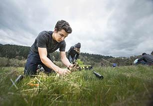 Students examining soil