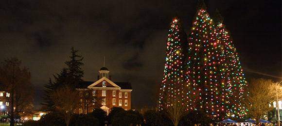 Star Trees and Waller Hall with holiday lights